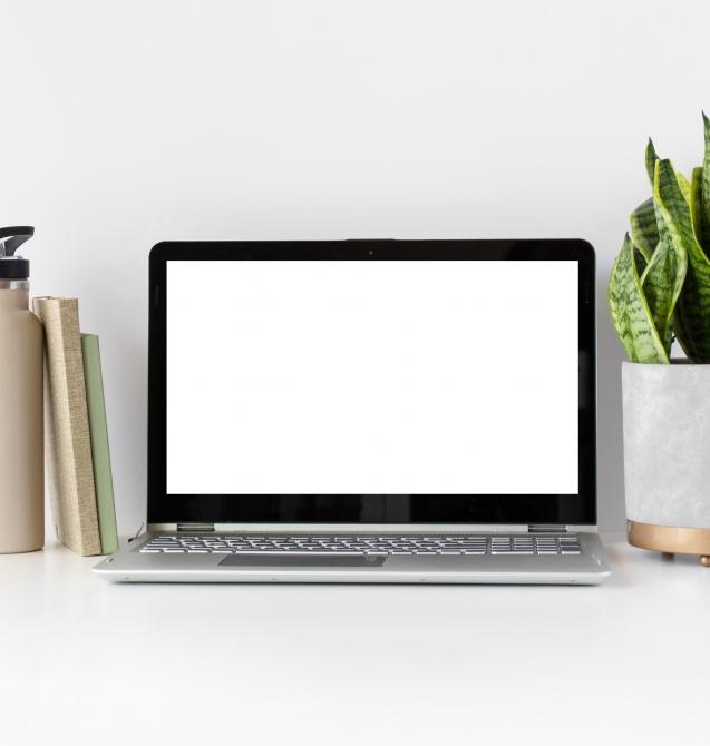 laptop-screen-mockup(2)